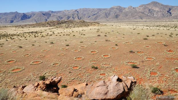 Namibia's mysterious fairy circles
